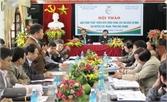 Đề xuất giải pháp phát triển bền vững vùng cây ăn quả có múi huyện Lục Ngạn