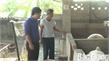 Từ hầm khí biogas, người dân Hiệp Hòa thay đổi nhận thức trong chăn nuôi