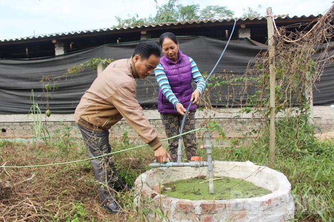 Hầm khí biogas, hiệu quả, phát triển chăn nuôi, xã Tân Hiệp, huyện Yên Thế