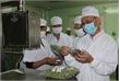 """Bảo quản nông sản bằng """"lai ghép"""" công nghệ sấy"""
