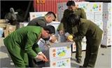 Bắt giữ, tiêu hủy gần 4 tấn trái cây có nhãn mác Trung Quốc