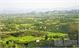 Bac Giang promotes fruit-tree development
