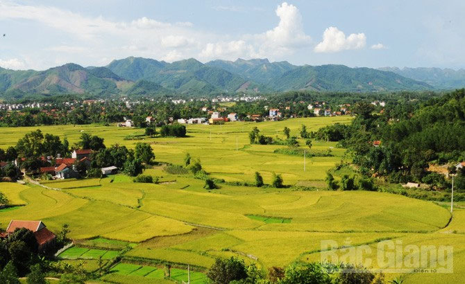 Son Dong district, a must-see destination, Bac Giang