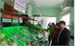 Khai trương cửa hàng bán nông sản an toàn