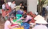 Lục Ngạn: Giải quyết việc làm mới cho 3.300 lao động