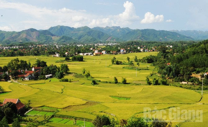 Son Dong district – A must-see destination in Bac Giang