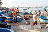 Bồi thường sự cố môi trường biển: Đợt I phải xong trước Tết