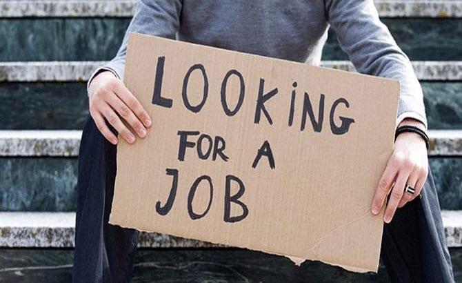 Lao động, trình độ, đại học, thất nghiệp, năm 2017