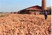 Xử lý vi phạm xâm lấn đất lúa: Chậm khôi phục hiện trạng