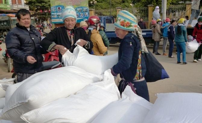 Hỗ trợ, 10 nghìn, tấn gạo, 12 địa phương