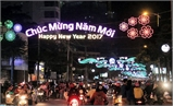 Tổ chức lễ hội đường phố và nghệ thuật biểu diễn đón Xuân Đinh Dậu