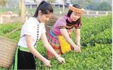 Tiềm năng du lịch Xuân Lương