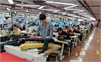 Bắc Giang: Đồng ruộng, nhà máy hối hả ngay từ những ngày đầu xuân