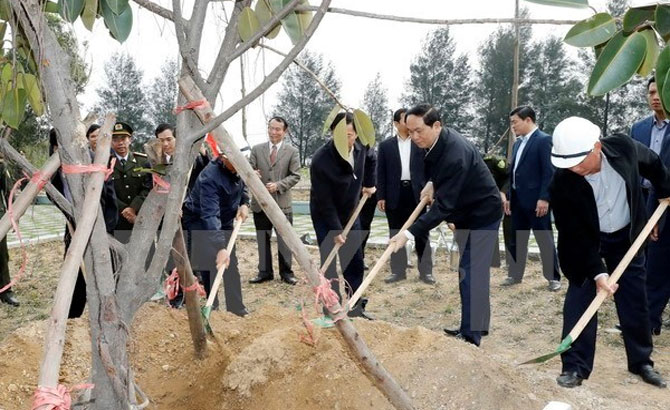 President, widespread response to, tree planting festival
