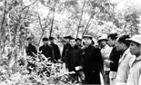 Đồng chí Trường Chinh - Nhà lãnh đạo kiệt xuất của cách mạng Việt Nam