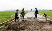 Việt Yên: 5 tỷ đồng hỗ trợ xây dựng nông thôn mới