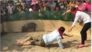 Cười nghiêng ngả xem trò bịt mắt bắt lợn rừng ở Xuân Lương, Yên Thế
