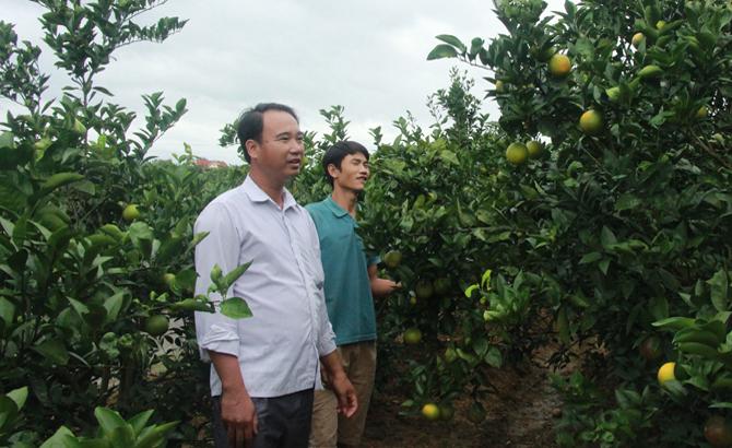 Lục Ngạn: 40 tỷ đồng xây dựng nông thôn mới
