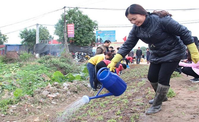Hiệp Hòa triển khai mô hình trồng hoa ven đường