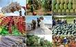 Dự báo tăng trưởng GDP của Việt Nam năm nay là 6,4%
