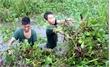 Thanh niên quân đội: Đi đầu trong mọi nhiệm vụ