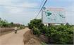 "Bac Giang expands GlobalGAP ""Thieu"" lychee area"