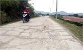 Lún, nứt hơn 200 m đê hữu Thương đoạn qua TP Bắc Giang