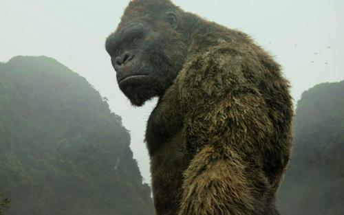Kong: Skull Island, gần 143 triệu đôla,  ra rạp, công chiếu