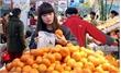 Vướng thủ tục, nông sản khó vào siêu thị