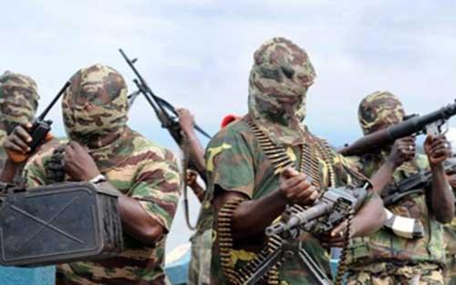 Cameroon, giải thoát, 5.000 người, nhóm cực đoan, Boko Haram