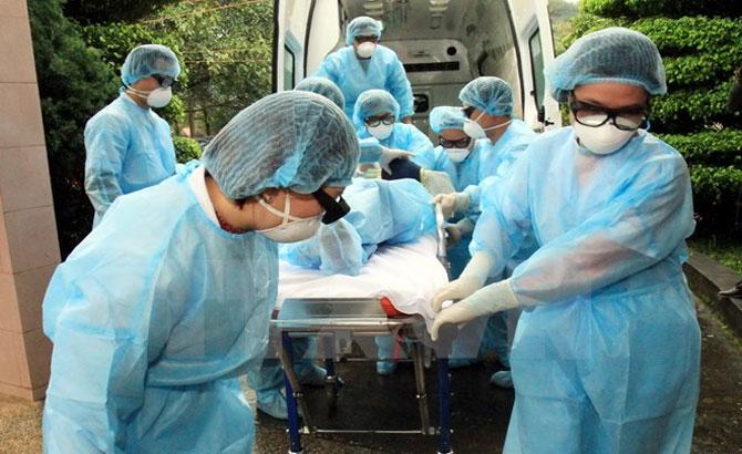 Diễn tập, phòng, chống H7N9, cúm gia cầm, động lực cao