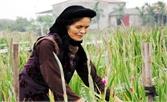 Mẹ với cánh đồng mùa xuân