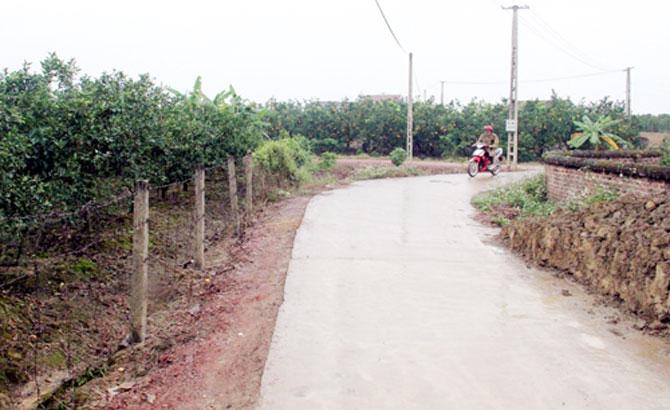 Lục Ngạn: Cứng hóa gần 10 km đường giao thông nông thôn