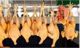 Việt Nam đã nhập hàng nghìn tấn thịt từ Brazil trong năm nay