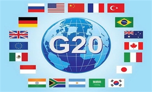 Vietnam active in G20 senior official meeting in Germany