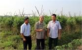 Việt Yên nâng cao chất lượng tổ chức cơ sở đảng: Khắc phục từng mặt hạn chế