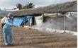 Bắc Giang: Bổ sung 1 tỷ đồng phòng, chống dịch bệnh động vật