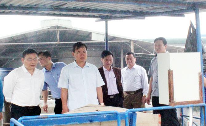 Phó Chủ tịch Thường trực HĐND tỉnh Bùi Văn Hạnh khảo sát việc giải quyết ô nhiễm môi trường tại kênh T6