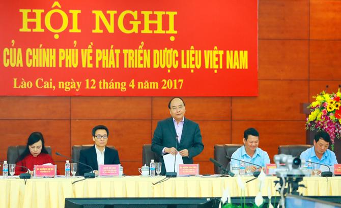 Thủ tướng, Chính phủ, Nguyễn Xuân Phúc,  chỉ đạo, xây dựng, vùng dược liệu,  trọng điểm, bảo tồn, nguồn gen, quý hiếm
