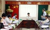 Bắc Giang: Nghiên cứu thành công kỹ thuật chăm sóc cam hiệu quả cao