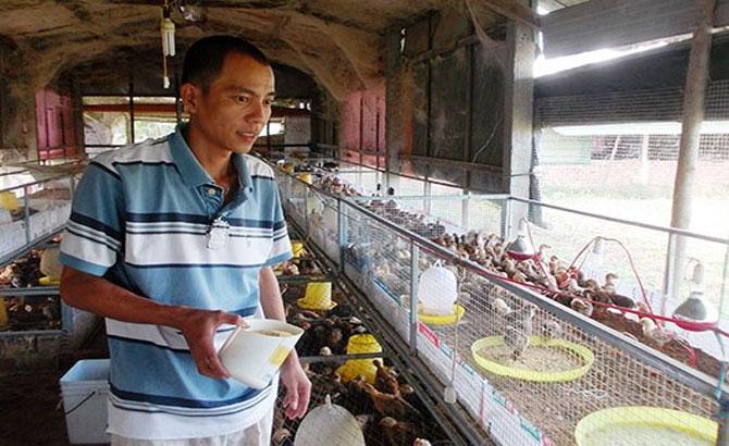 ông chủ trẻ, máy ấp trứng, đặc biệt