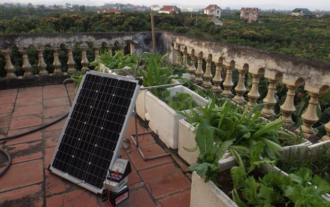 """Ý tưởng dự thi: """"Ứng dụng công nghệ đèn LED vào trồng rau trong thùng xốp"""""""