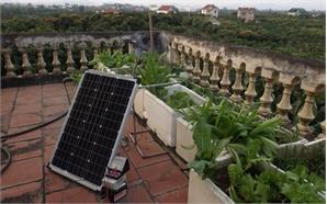 Ý tưởng dự thi: 'Ứng dụng công nghệ đèn LED vào trồng rau trong thùng xốp'