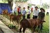 Tập đoàn VinGroup hỗ trợ người khó khăn trong tỉnh Bắc Giang gần 3,7 tỷ đồng
