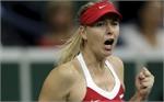 Giám đốc WTA bảo vệ quyết định cho Sharapova vé đặc cách dự Giải Stuttgart mở rộng