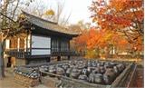Xu hướng du lịch nông thôn Hàn Quốc đang được ưa chuộng