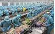 Hơn 100 tỷ đồng nâng cao năng lực cạnh tranh ngành thủy sản