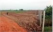 Lục Nam: Phạt hành chính hai DN tự chuyển mục đích sử dụng đất