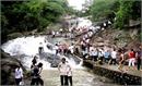 Khu du lịch Suối Mỡ đón khoảng 8 vạn lượt khách