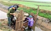 Hiệp Hòa thực hiện Chỉ thị về công tác bảo vệ môi trường: Nhiều giải pháp đồng bộ